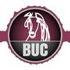 Bucephalus Logo
